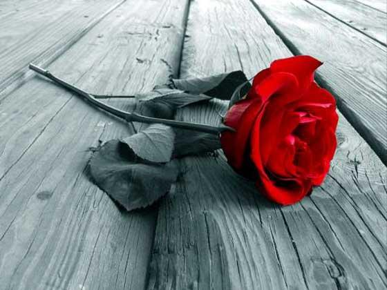 conseguir uma amante para o Dia dos Namorados